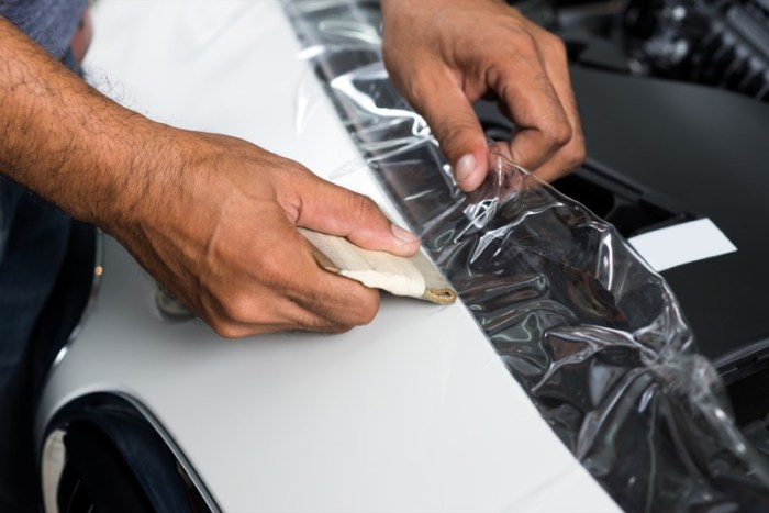 Vehicle Paint Protection