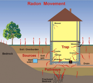 radon 300x267 All About Environmental Toxins