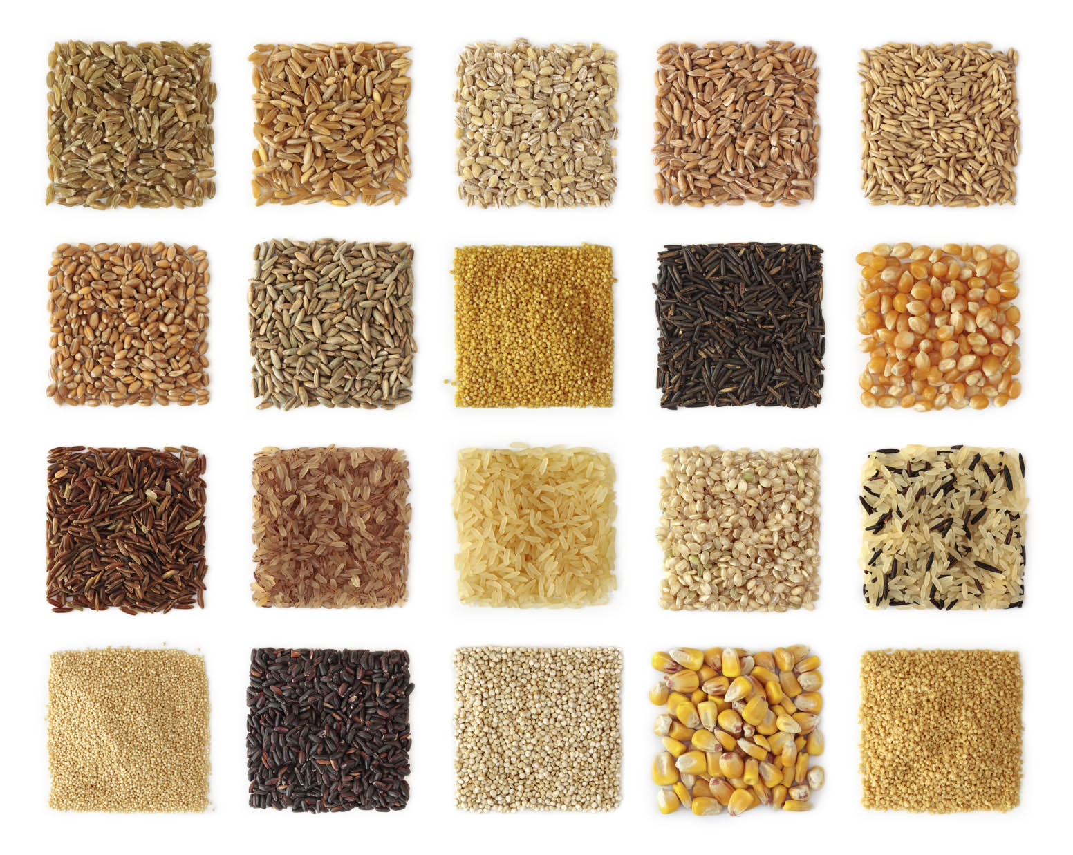 precision nutrition whole grains Settling the great grain debate. Can wheat and other grains fit into a healthy — and sane — diet?