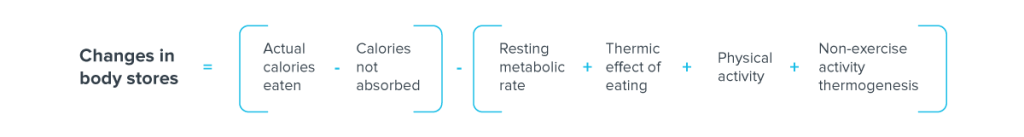 metabolism_4 corrected