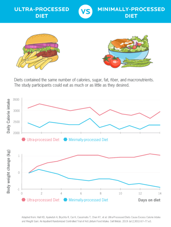 Chart shows data from two diets: One that included mostly minimally-processed foods and another that included mostly ultra-processed foods. The diets provided the same amount of calories, fat, fiber, and macronutrients, and the study participants could eat as much or as little as they desired. One line graph shows that when people ate the minimally-processed diet for two weeks, they consumed around 2,500 calories a day. When they consumed the ultra-processed diet for two weeks, they consumed about 3,000 calories a day. A second line graph shows that people lost about one kilogram when they consumed an ultra-processed diet, and they gained 1 kilogram when they consumed a minimally-processed diet.