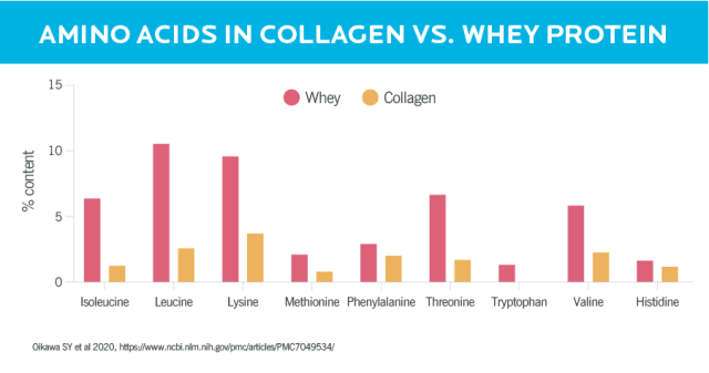 A bar graph showing how collagen protein and whey protein compare to each other in terms of essential amino acids. Collagen is overall lower in EAAs, and is missing the amino acid tryptophan.