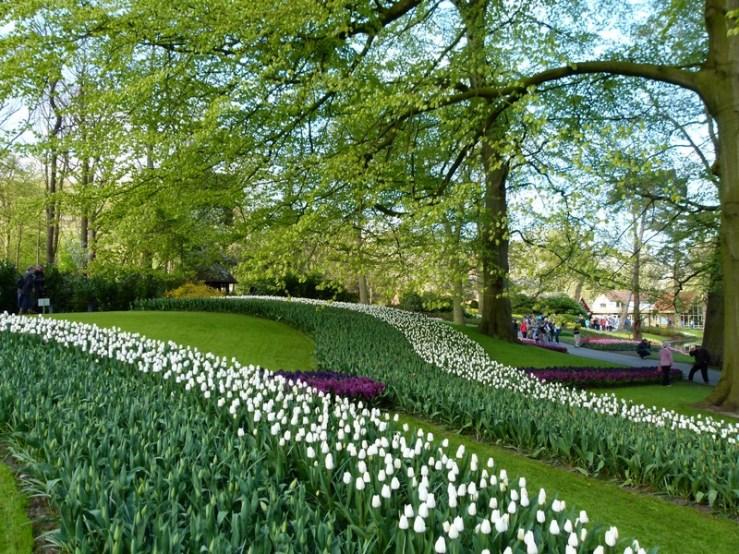 No dia 20/04/16 ainda era possível ver muitas áreas verdes dentro do parque