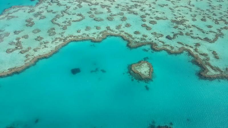 voo panoramico whitehaven beach e barreira de corais