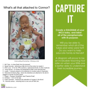 Capture It – Create a Diagram