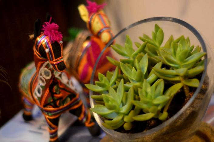 Succulents alongside ethnic indian stuffed animals.