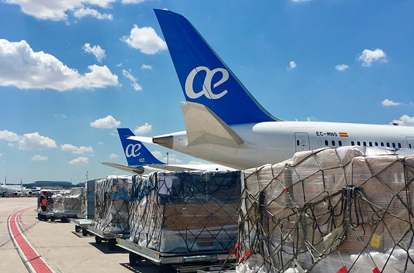 El mayor lessor del mundo retira a Air Europa su primer avión | Noticias de Aerolíneas