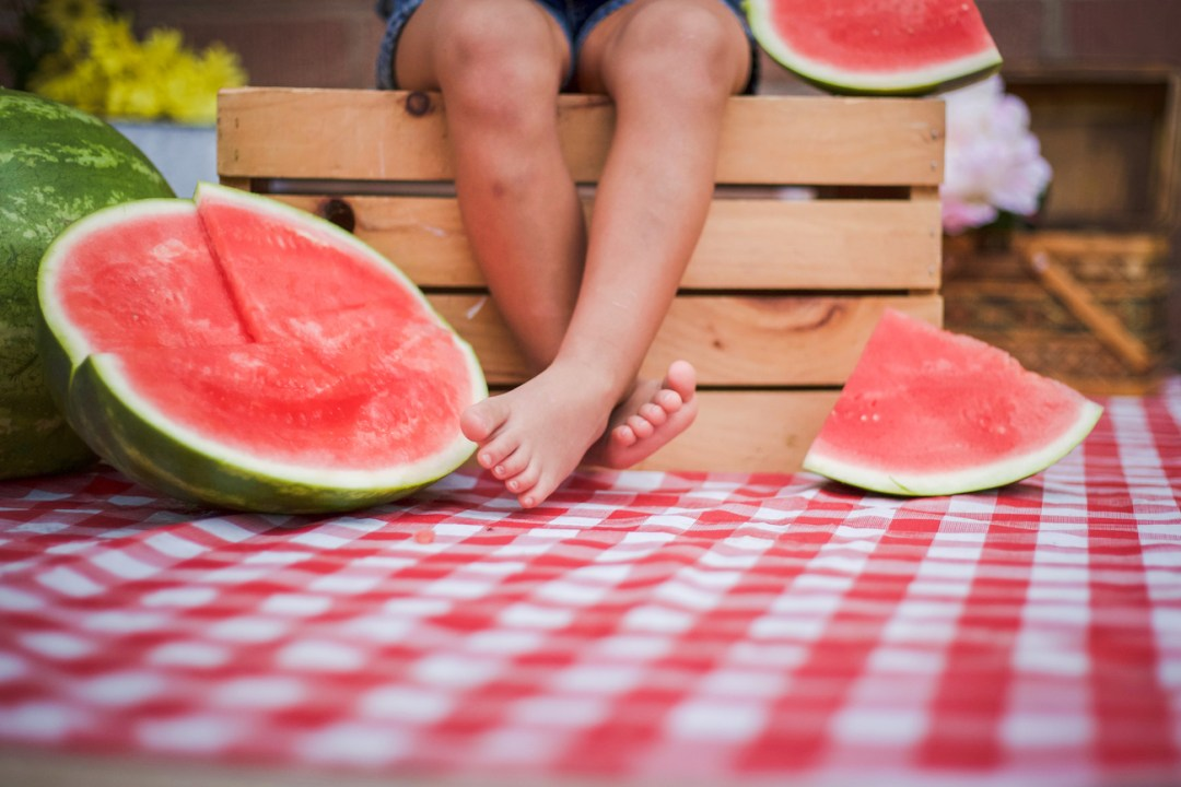 watermelon-picnic-creative-branding-photographer-in-west-phoenix-for-product-photo-shoots-and-advertising-promotions-az