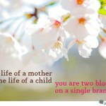 life of a mother quote
