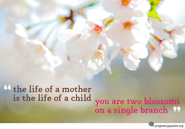 The Life of a mother pregnancy quote