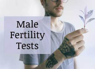 Male fertility test