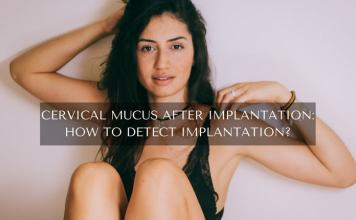 Cervical Mucus After Implantation: How To Detect Implantation?