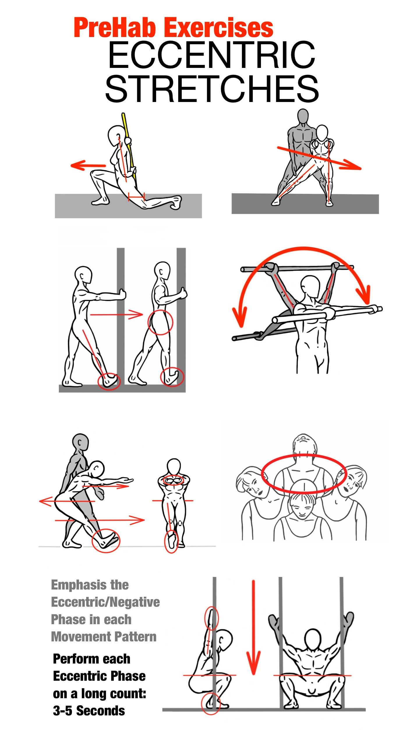 Eccentric Workout Program Blog Dandk