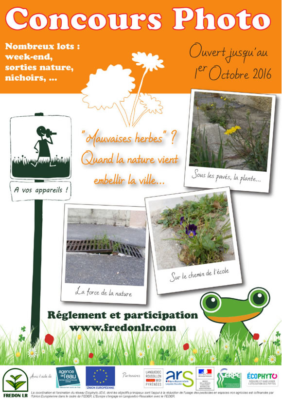 concours photos mauvaises herbes