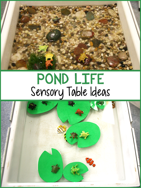 Small Fish Pond Ideas