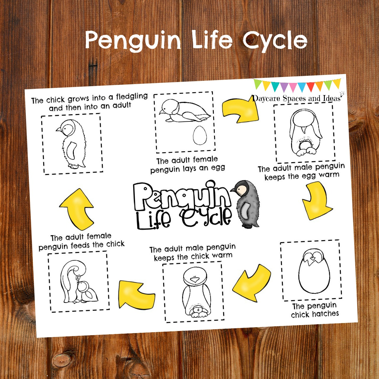Penguin Activity Pack