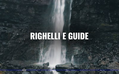 L'allineamento con guide e righelli