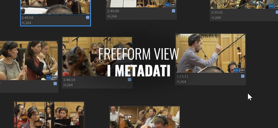 Visualizzazione libera: i metadati