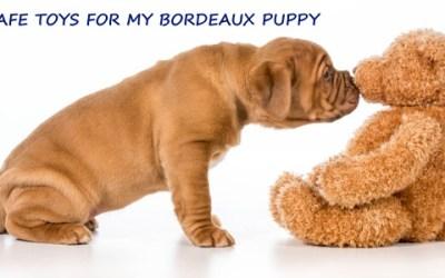 SAFE TOYS FOR A DOGUE DE BORDEAUX