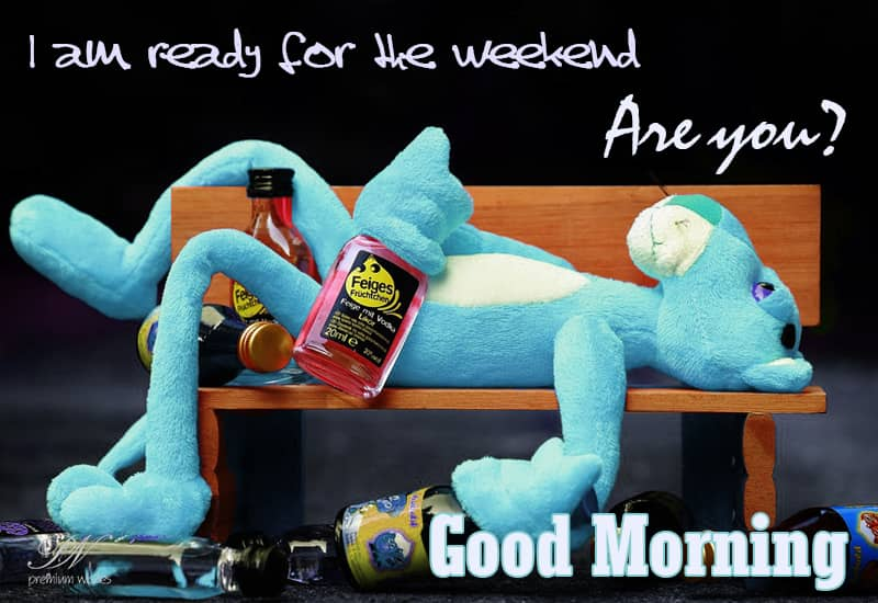 Good Morning Are You Ready For The Weekend Simply Good Morning Premium Wishes