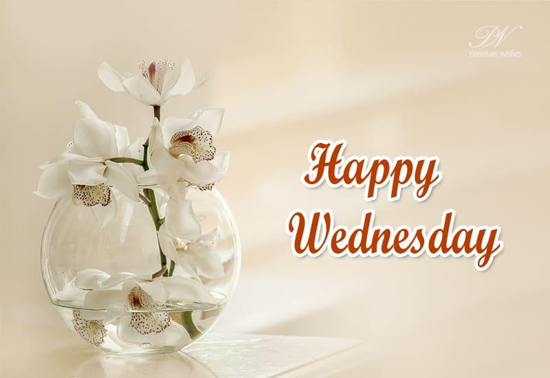 Happy Thursday Hello Everyone Thursday Wishes Premium Wishes