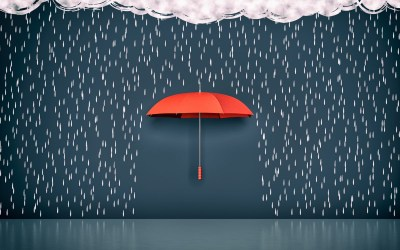 "Crisis Management Weaknesses – ""An Umbrella in a Manhole"""