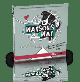 WatsonsWay-3D-WebTransparent