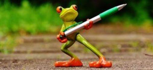 frog-1446239_640