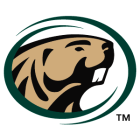 Image result for bemidji state university hockey logo