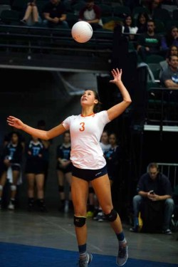 Dani Barton chose collegiate volleyball over basketball. (Photo by Ari Davis)