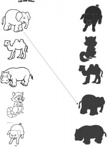 Animal Shadow Match Worksheets