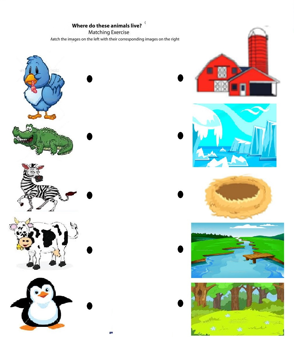 animal pages for kids pattern moreover english worksheets