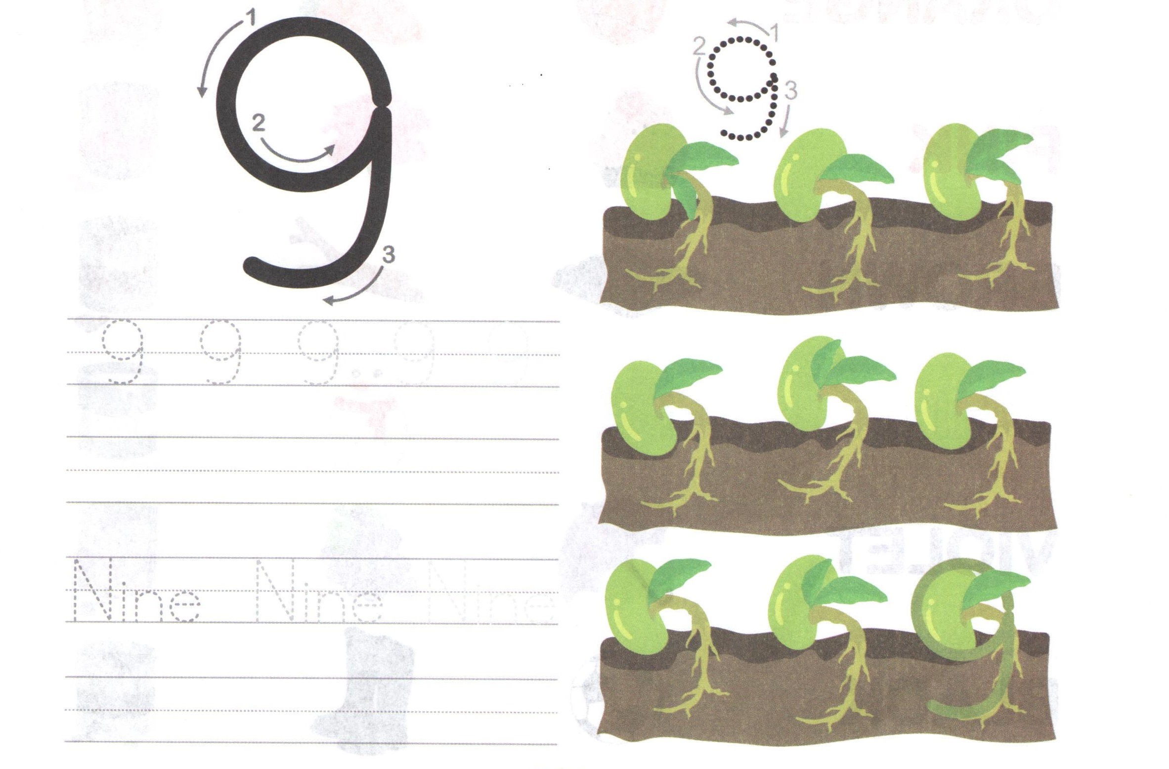 Nine 9 Worksheet For Learning Numbers