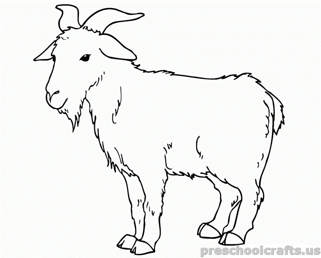 Coloring Pages Of Goats