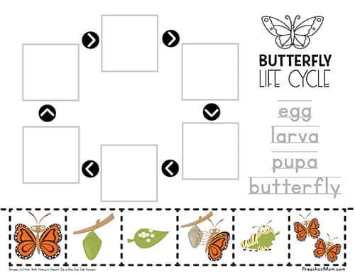 ButterflyWorksheet