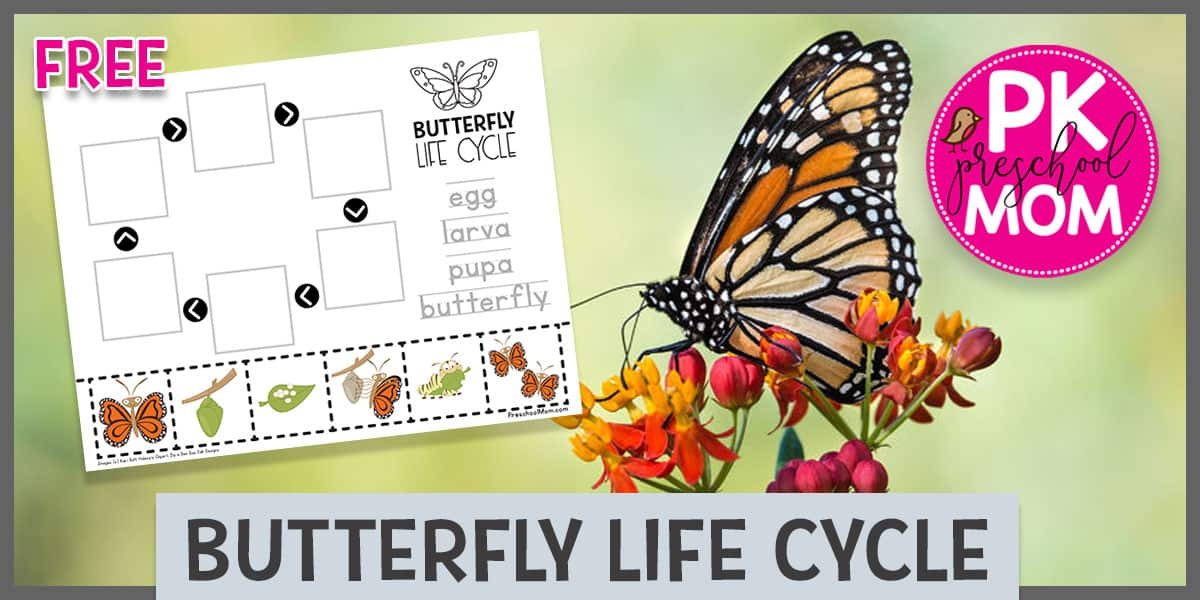 Butterfly Preschool Printables - Preschool Mom | 600x1200