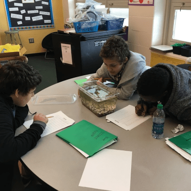 Student-Led Pond Investigations – Letters to a Pre-Scientist