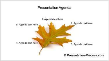Creative Presentation Agenda with Leaf