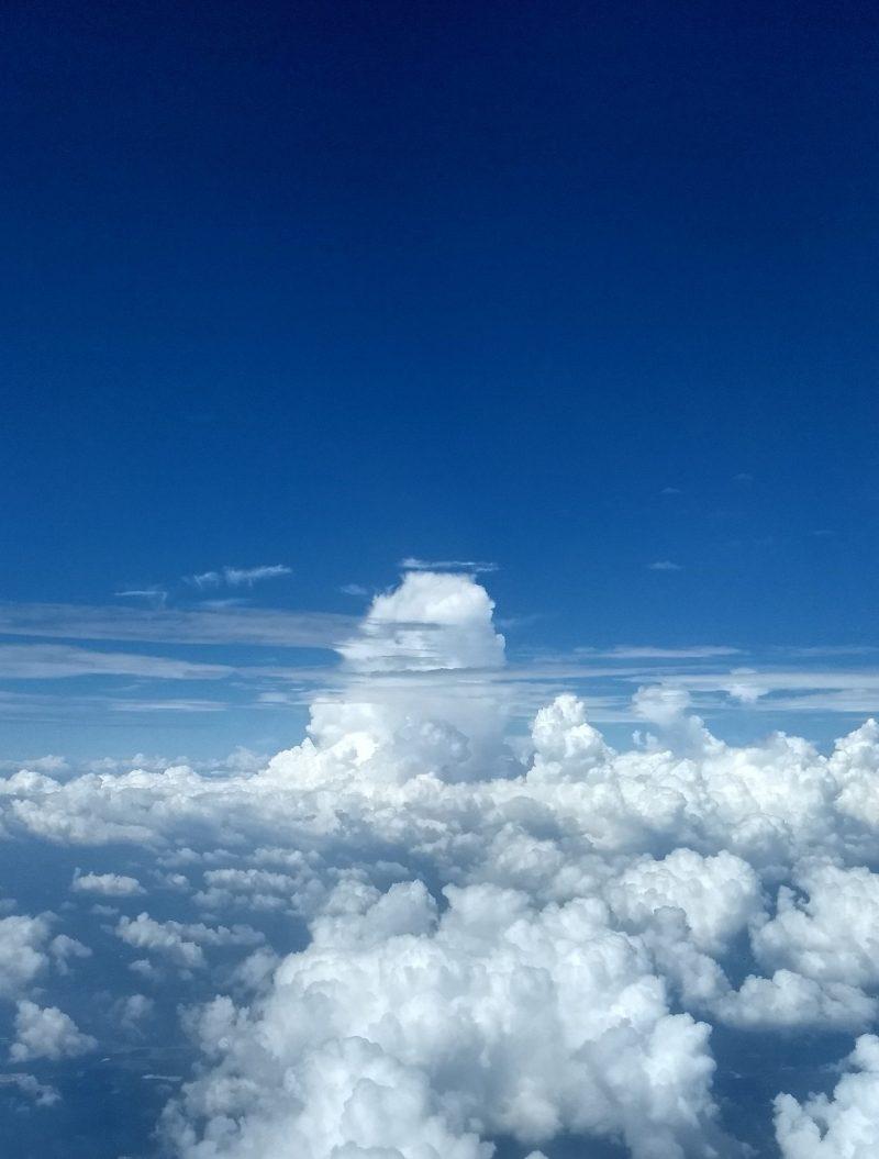 malaysia free flight