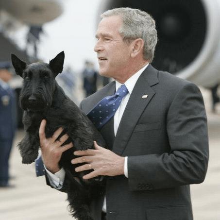 Bush Presidential Dog Barney Dies at Age 12