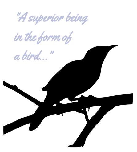 Thomas Jefferson's Mockingbird Named Dick