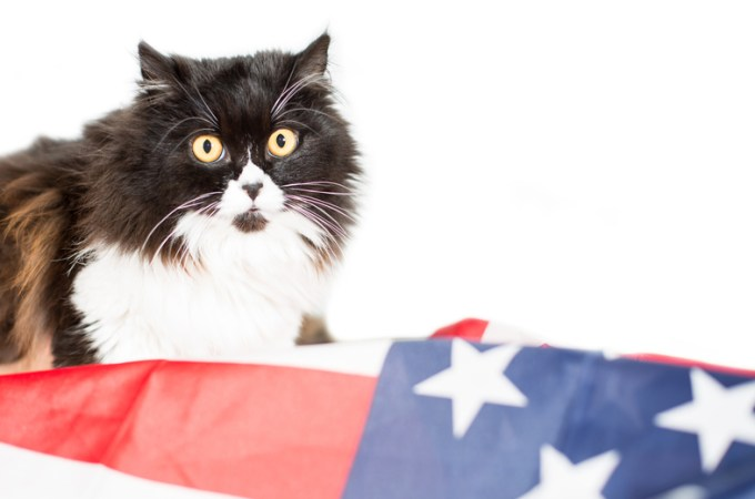 Presidential Pet Trivia – Week of October 21, 2019