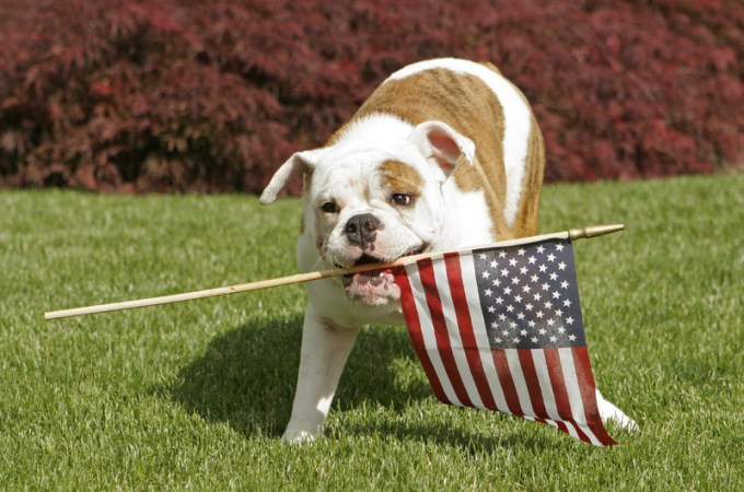Presidential Pet Trivia – Week of June 17, 2019