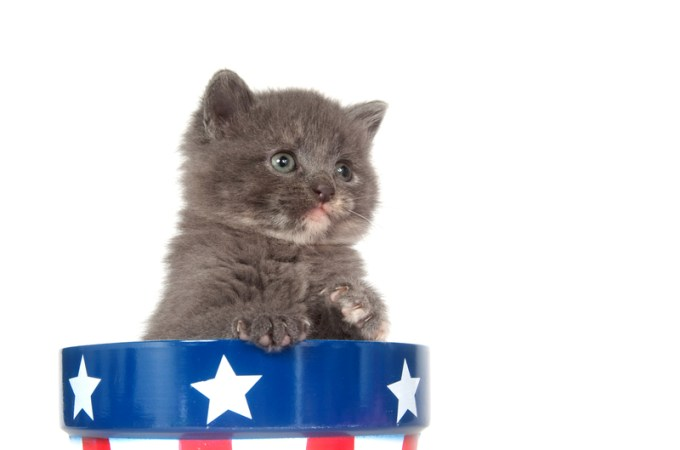 Presidential Pet Trivia – Week of April 8, 2019