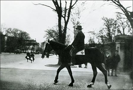Theodore Roosevelt's Bleistein
