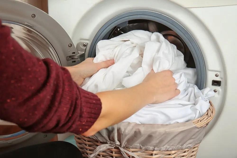 washing-bedding expense Bedbugs Presidio Pest Management