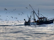 Fishing is a key Scottish industry