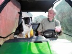 Don the dog of Kirkton Farm near Abington after he crashed the farm vehicle onto the M74