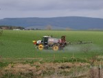 Farmers must adjust their fungicide programme according to the season