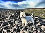 Daisy Wood on holiday in Achiltibuie near Ullapool. Daisy lives with Alice Wood in Inverness.